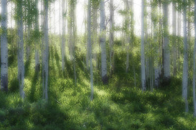 Art Print featuring the photograph Aspen Morning 2 by Marie Leslie