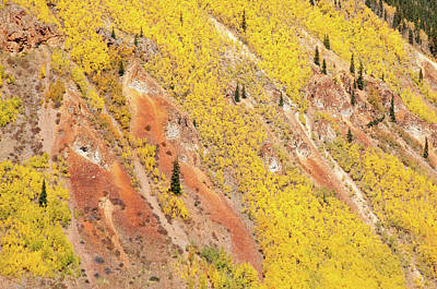 Photograph - Aspen Mountainside  by Steve Stuller