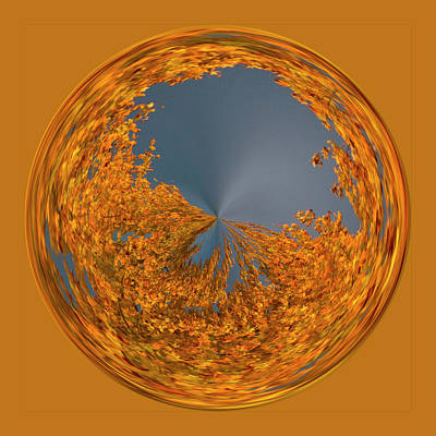 Art Print featuring the photograph Aspen Orb by Bill Barber