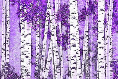 Photograph - Aspen Trunks Lavender Wash by John Stephens