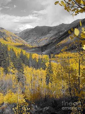 Aspen Valley In Fall Art Print by Jeff White