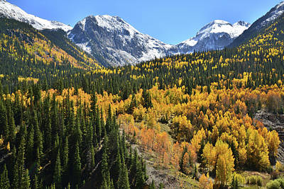 Photograph - Aspen Valley In Silverton by Ray Mathis