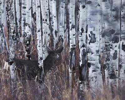 Digital Art - Aspen View 4 by Ernie Echols