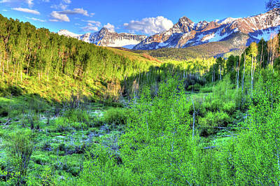 Photograph - Aspen View by Scott Mahon