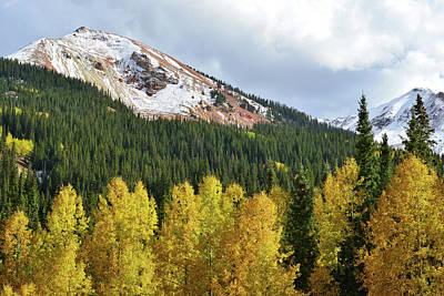 Photograph - Aspens And  Red Mountain by Ray Mathis