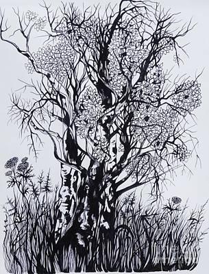 Autumn Landscape Drawing - Aspens by Anna  Duyunova