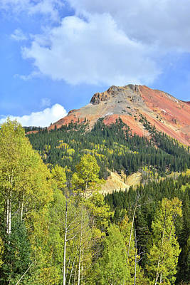 Photograph - Aspens Below Red Mountain by Ray Mathis