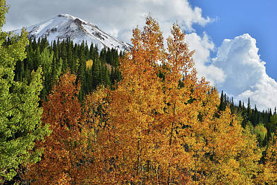 Photograph - Aspens, Clouds And Red Mountain by Ray Mathis