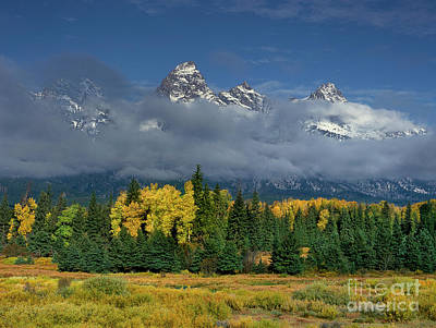Photograph - Aspens In Fall Color Below The Tetons  Blacktail Ponds Grand Tetons National Park Wyoming by Dave Welling