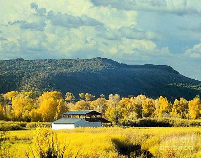 Photograph - Aspens In The Autumn In Colorado by Janette Boyd