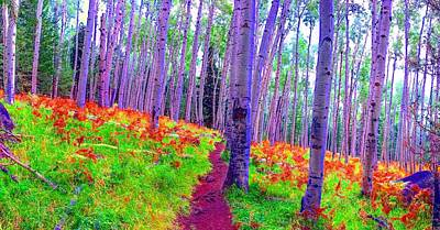 Photograph - Aspens In Wonderland by Michael Oceanofwisdom Bidwell