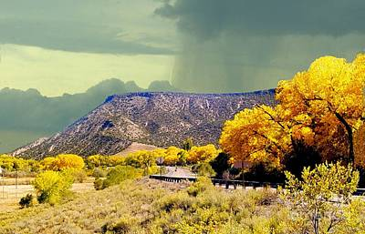 Photograph - Aspens Near Durango Colorado In October by Janette Boyd
