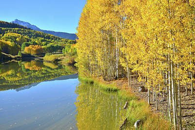 Photograph - Aspens Reflected In Lake by Ray Mathis