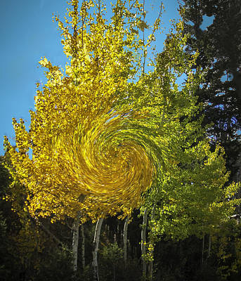 Photograph - Aspens Turning by Gary Baird