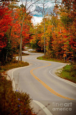 Photograph - Asphalt Creek In Door County by Mark David Zahn