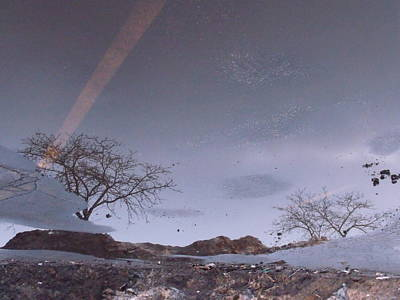 Asphalt Reflection I Art Print by Anna Villarreal Garbis