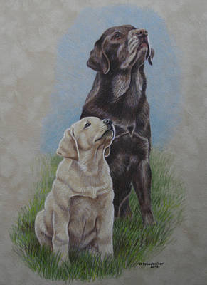 Chocolate Lab Drawing - Aspirations by Debbie Stonebraker