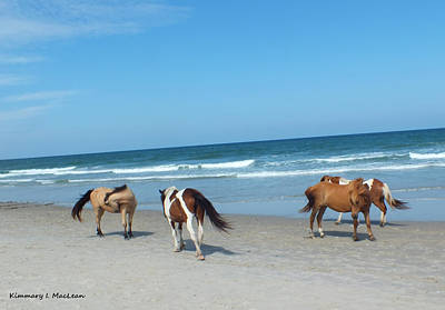 Photograph - Assateague 1 by Kimmary MacLean