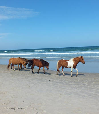 Photograph - Assateague 2 by Kimmary MacLean