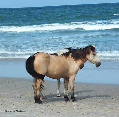 Photograph - Assateague 3 by Kimmary MacLean