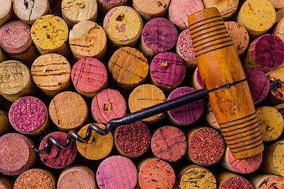 Stopper Photograph - Assorted Wine Corks And Corkscrew by Garry Gay