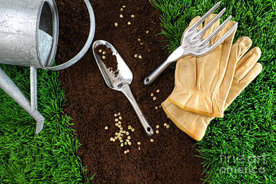 Turf Photograph - Assortment Of Garden Tools On Earth by Sandra Cunningham