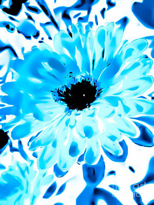Abstract Flower Photograph - Aster In Beautiful Blues by Heather Joyce Morrill