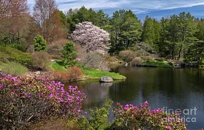 Photograph - Asticou Azalea Garden by Karin Pinkham