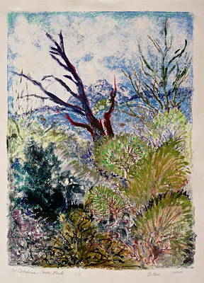 Mountainous Mixed Media - At Catalina State Park by Bonnie See