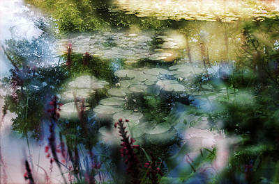 Original featuring the photograph At Claude Monet's Water Garden 2 by Dubi Roman