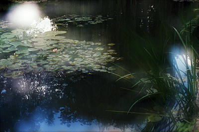 Original featuring the photograph At Claude Monet's Water Garden 3 by Dubi Roman