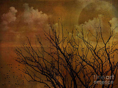 Digital Art - At End Of Day IIi by Rhonda Strickland