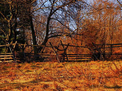 Photograph - At In Maryland Fence by Raymond Salani III