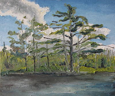 At Islands Lake No1 Art Print by Francois Fournier