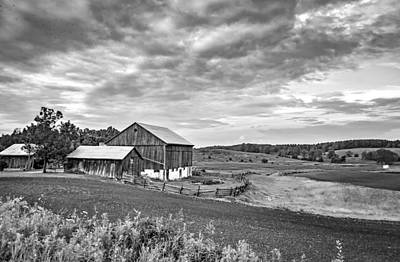 Fence Photograph - At One With The Land - Bw by Steve Harrington
