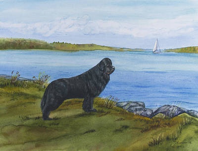 Newfie Painting - At Seneca Lake by Sharon Nummer