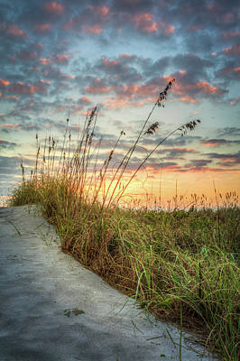 Photograph - At The Dunes by Debra and Dave Vanderlaan