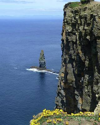 Photograph - At The Edge Of The Cliffs Of Moher by Barbie Corbett-Newmin