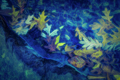 Photograph - At The Edge Of The Water In Blues by Debra and Dave Vanderlaan