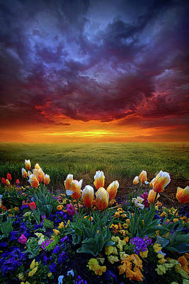 Hope Photograph - At The End Of Darkness by Phil Koch