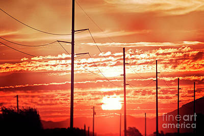 Photograph - At The End Of The Day by Janie Johnson