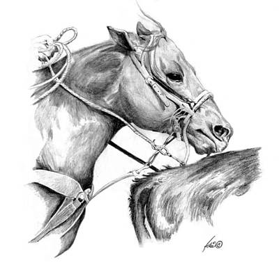 Animals Drawings - At The Hip by Idie Karr