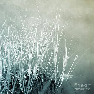 Photograph - At The Lake 2 by Priska Wettstein