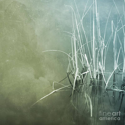 At The Lake 5 Art Print by Priska Wettstein