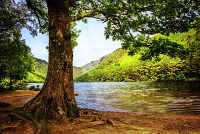 Photograph - At The Lake Of Glendalough by Debra and Dave Vanderlaan