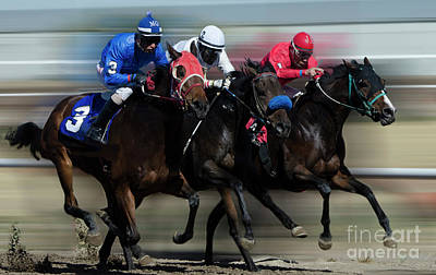 Photograph - At The Racetrack 2 by Bob Christopher