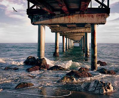 At The Seahore Art Print