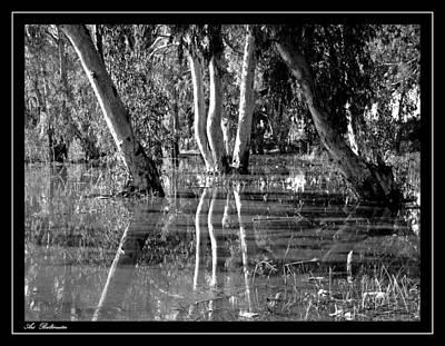 At The Swamp 2 Art Print