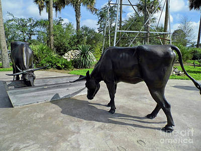 Photograph - At The Water Trough by D Hackett