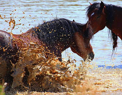 Photograph - At The Watering Hole by Marty Fancy